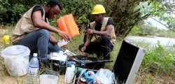 June 2017 - May 2018:Establishment of a Baseline Database of the Environmental Component of the CLSG Project Area in Sierra Leone, TRANSCO Cote D'Ivoire-Liberia-Sierra Leone-Guinea (CLSG), Sierra Leone.